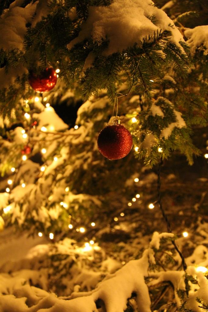 Julehelsing frå Moster 2013
